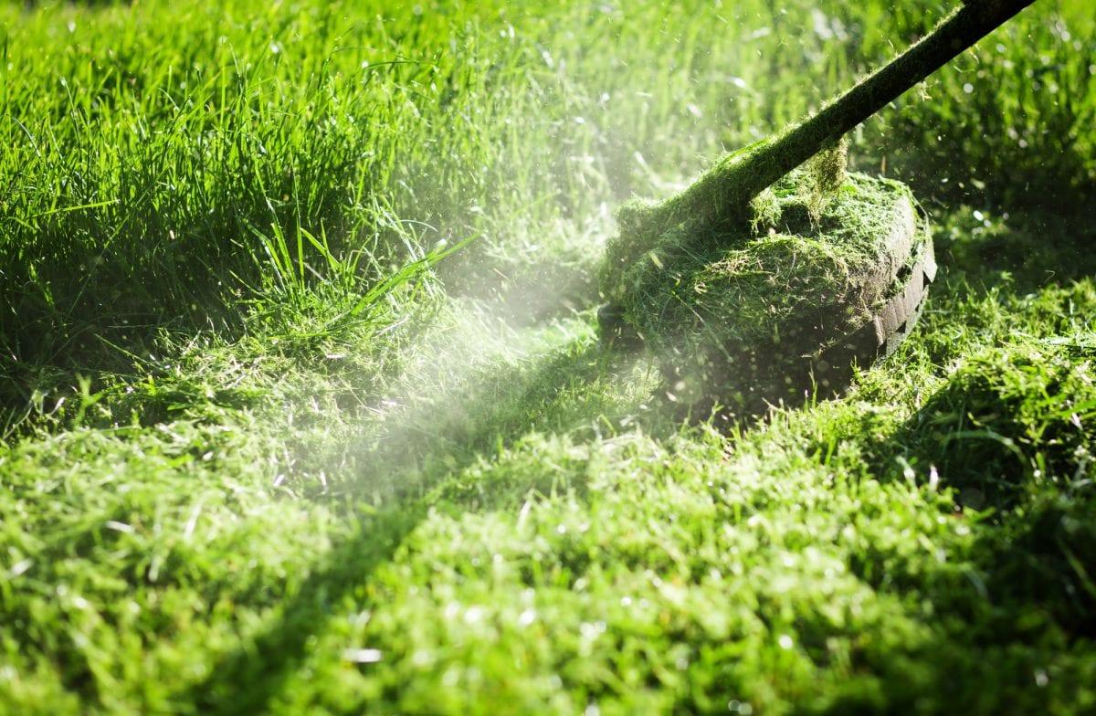 Fall Sprinkler Maintenance Tips