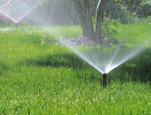 Choosing a Lawn Sprinkler System