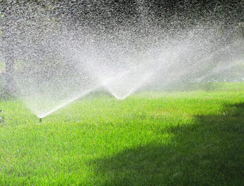 Prepare Omaha Sprinklers for Summer