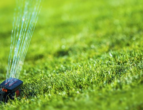 Conserve Water With Your Irrigation System
