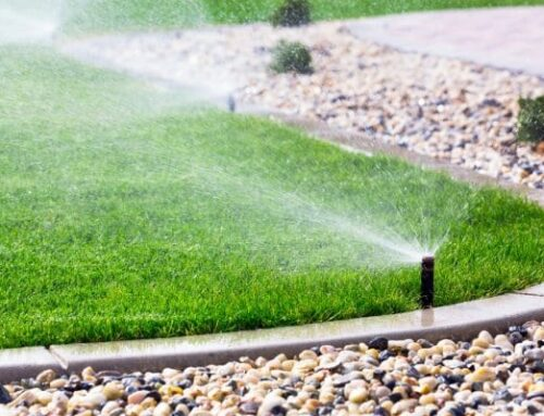 Why You Should Winterize Your Sprinkler System?
