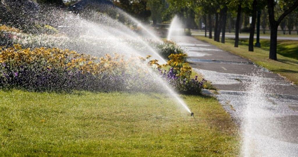 Landscaping Maintenance Tips