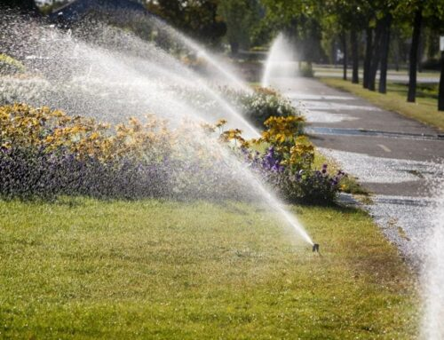 Landscaping Maintenance Tips For Property Managers