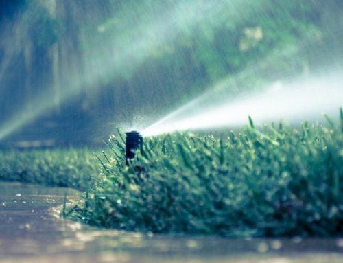 How Does a Rain Sensor Work on a Sprinkler System?