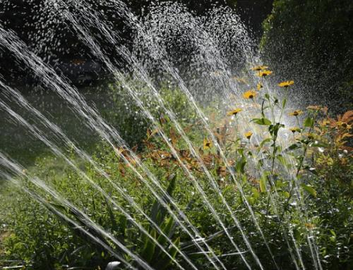 Underground Irrigation Vs Sprinklers